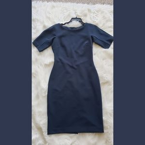 Blue Ann Taylor Sheath Dress